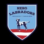 Hero Labradors